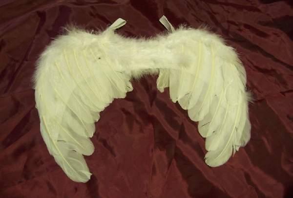 fehér, toll angyalszárny 54*36 cm (A)