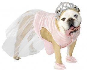hercegnő jelmez kutyának