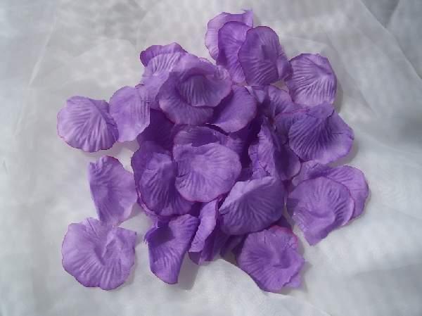 rózsaszirom bordás milkalila (100 db)-004
